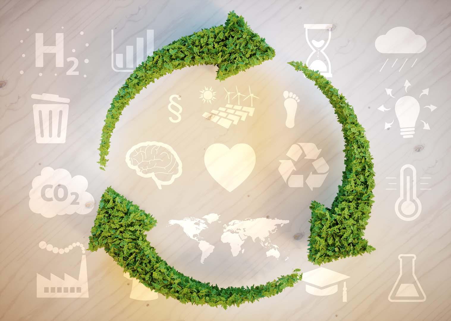 Emissioni di gas serra: il programma Interreg MED lancia la Call for Carbon Footprint Compensation Projects